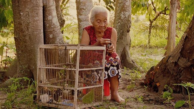 'Look of Silence' named best 2015 documentary