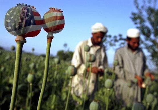 سازمان «سیا» دلال بزرگ مواد مخدر در افغانستان